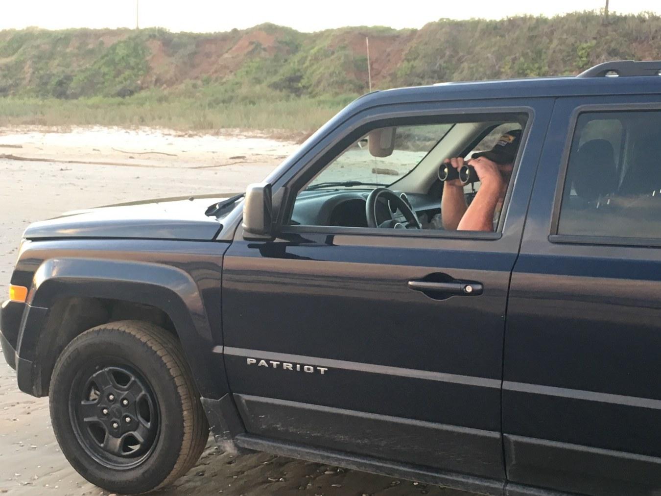 Birding Galveston By Car