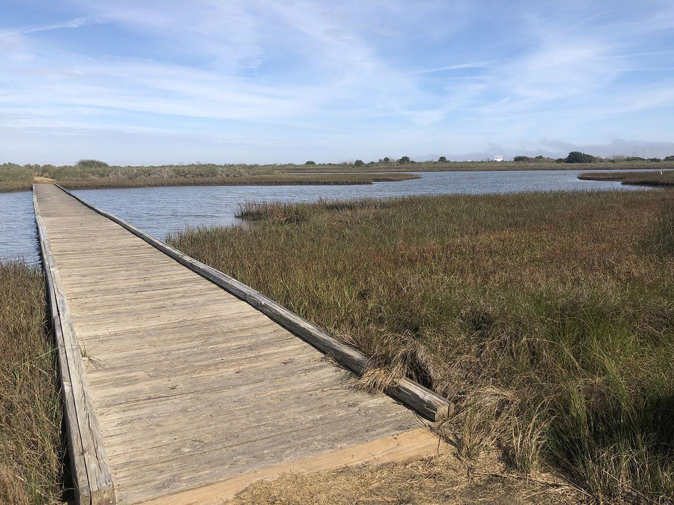 Galveston Island State Park Footbridge