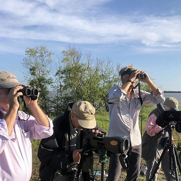 2019 Bird Count - Birders on East End