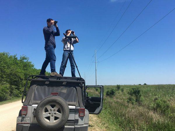 Great Texas Birding Classic Big Day - Birders on Top of Vehicle