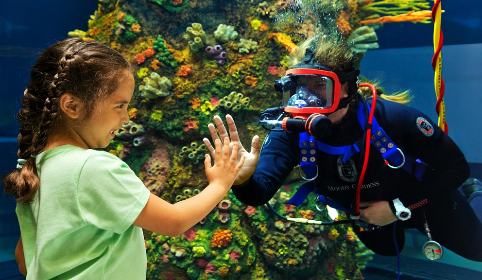 Moody Gardens Diver and Child