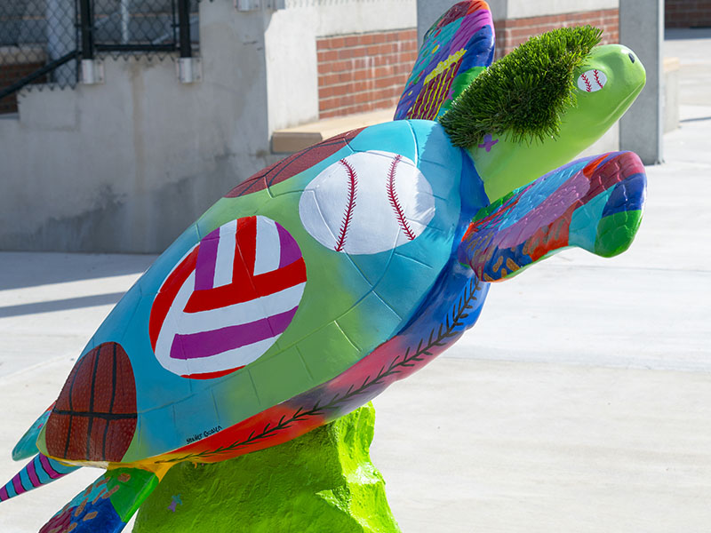 Homer - Turtles About Town Sculpture - Crockett Park