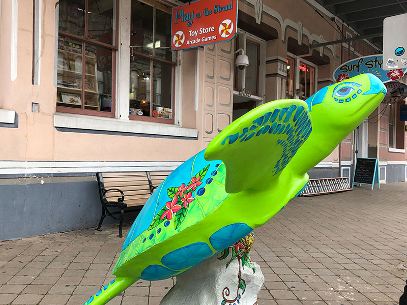 Turtles About Town Sculpture - Surf Styles
