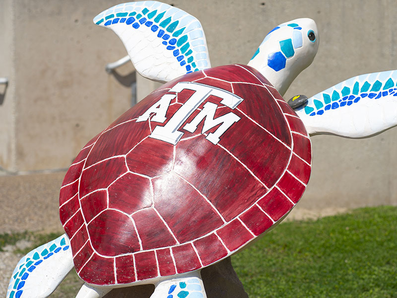 Spirit of Sea Aggieland - Turtles About Town Sculpture at Texas AM