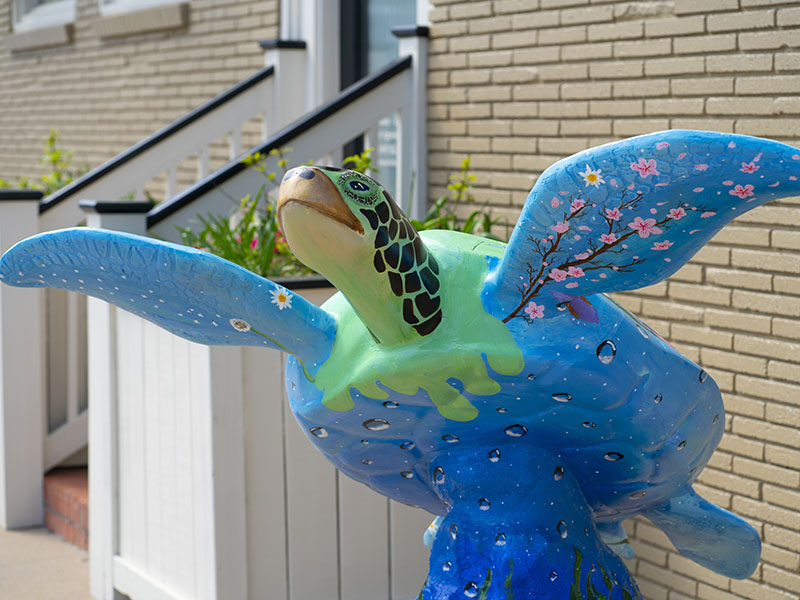 Turtles About Town - Therapeutic HealthWorks Day Spa - Tiger Lily