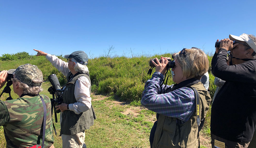 Birders at Texas A&M Wetlands