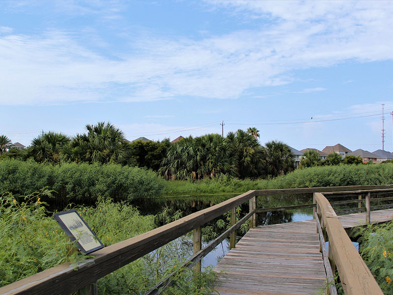 Path at Lafitte's Cove Nature Preserve