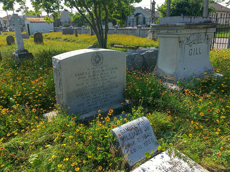 Samuel May Williams Historical Marker