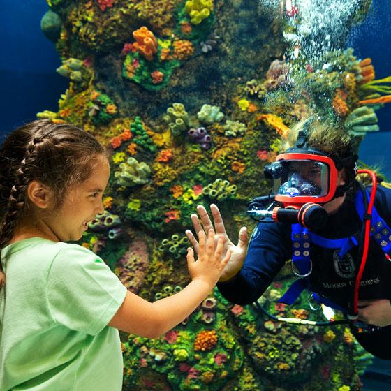 Child at Moody Gardens Aquarium