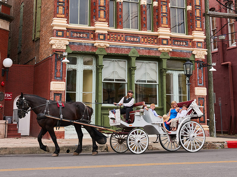 Horse Drawn Carriage in Galveston