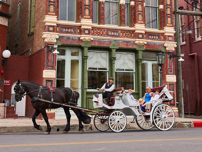 Horse Drawn Carriage in Galveston