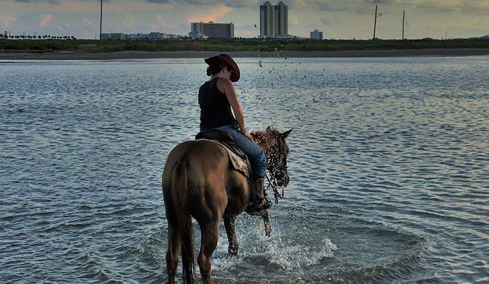 Galveston Island Horse & Pony Rides, Galveston TX