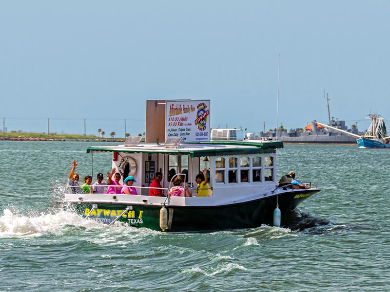 Baywatch Dolphin Tours Galveston