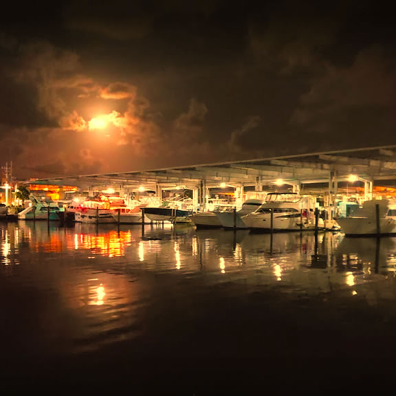 Galveston Yacht Basin Tx