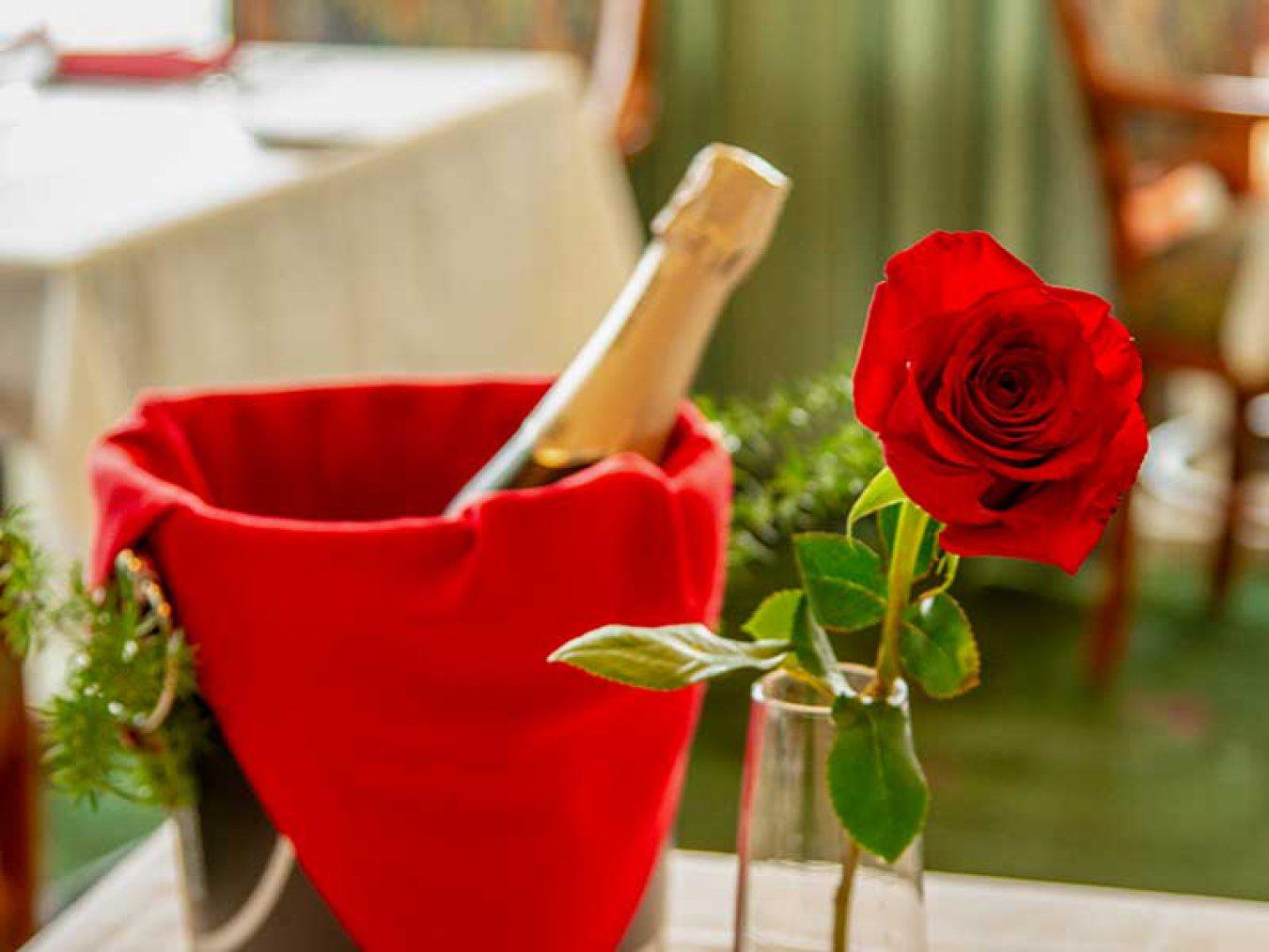 Valentine Flowers Moody Gardens