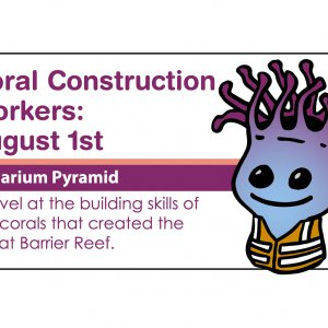 Coral Construction Workers