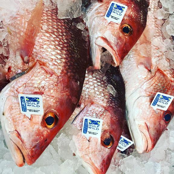 Katie's Seafood Market, Galveston TX