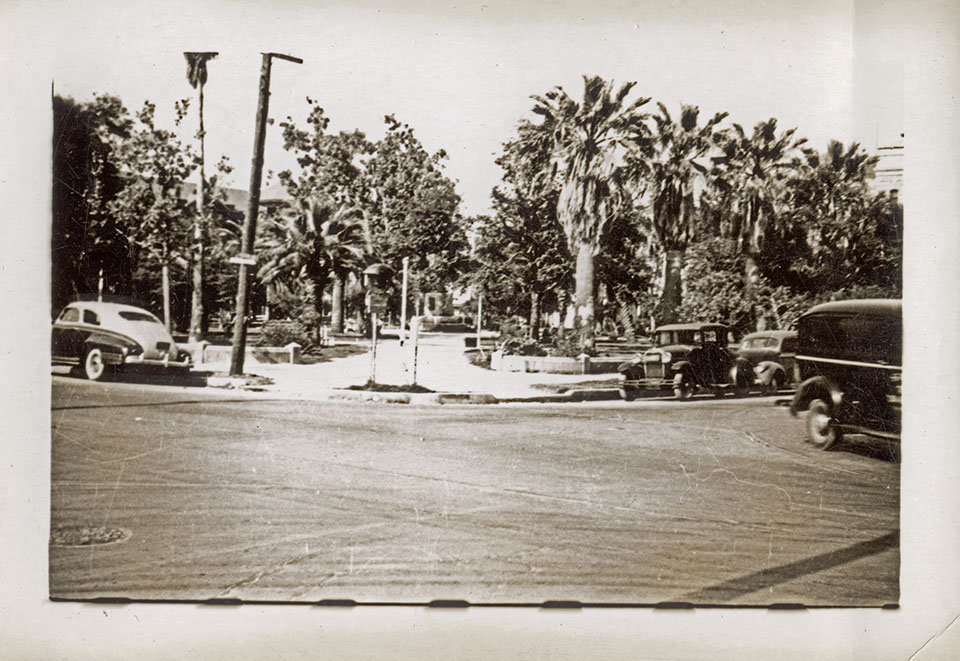 Palm Trees on Broadway in 1943