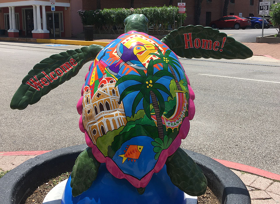 Tranquilo Baby - Turtle About Town