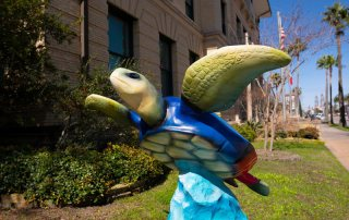 Turtles About Town