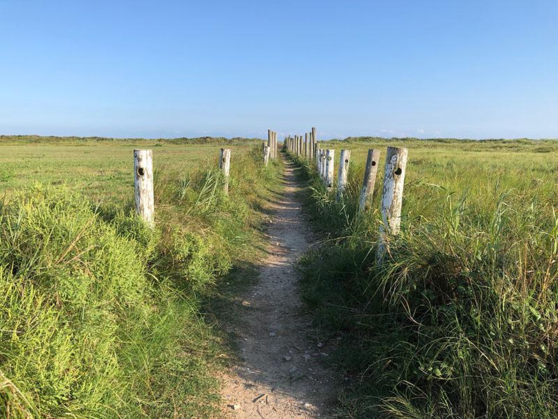 Beach Access Point 1A Trail to Beach