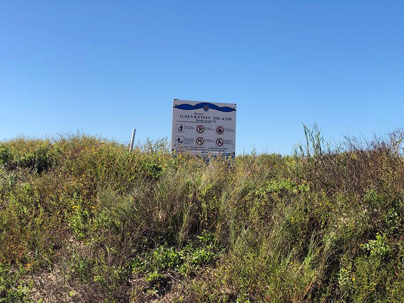 Beach Access Point 36 at Salt Cedar Drive Entrance Sign