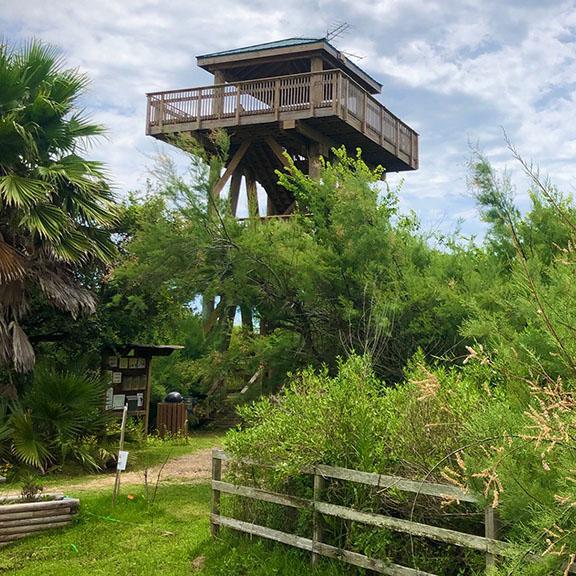 Quintana Neotropical Bird Sanctuary