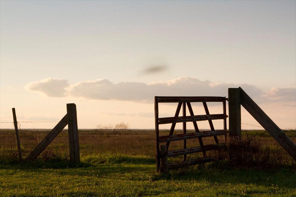 Fence at Coastal Heritage Preserve
