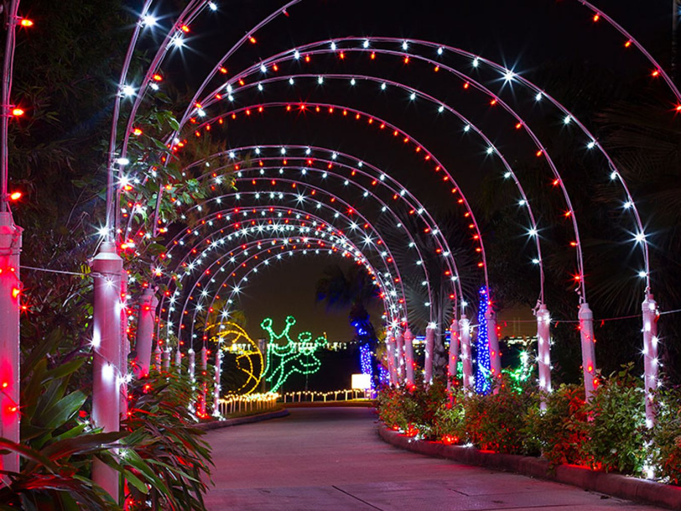 Festival of Lights Tunnel