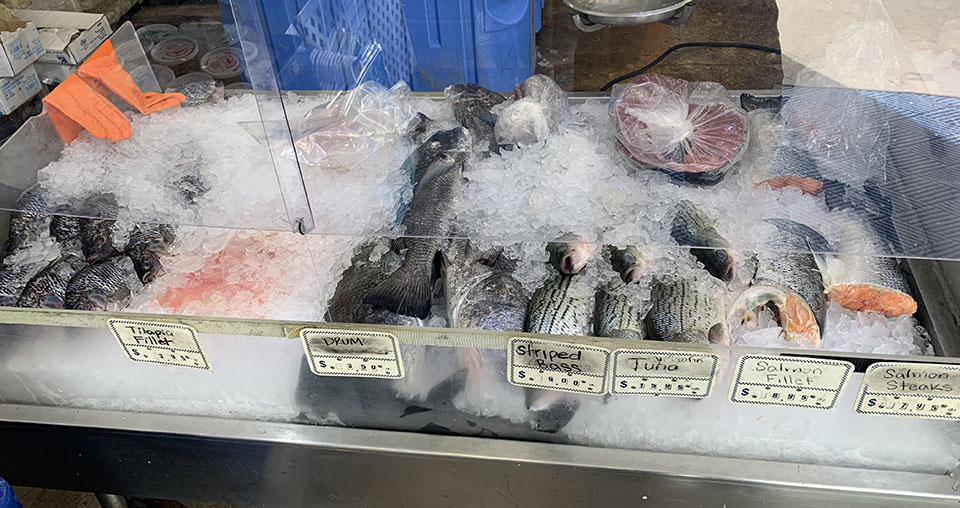 Fresh Fish For Sale at Katie's Seafood Market