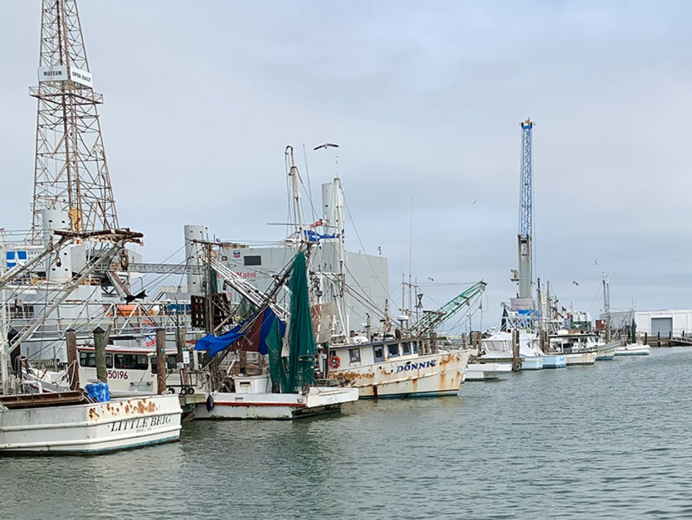 Shrimp Boats at Pier 19