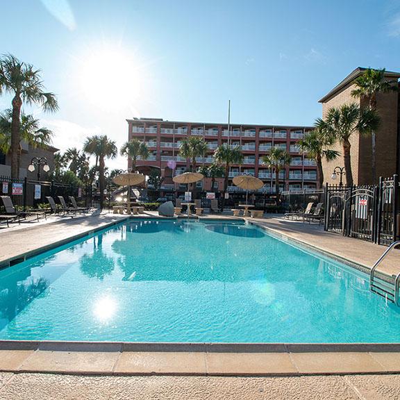 Beachfront Palms Pool