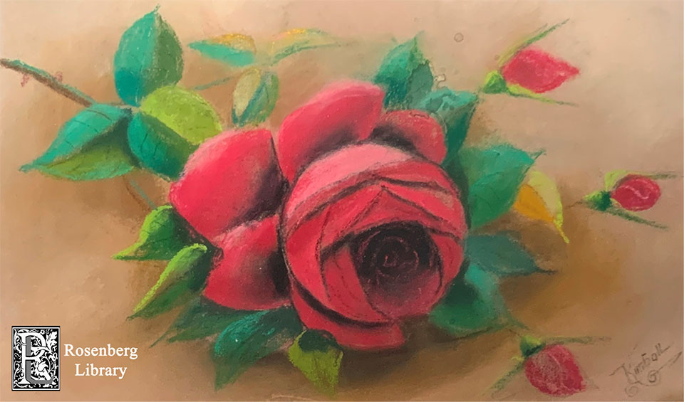 Pastel Rose Drawing by Maria C Kimball